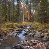 Осень :: vladimir Bormotov