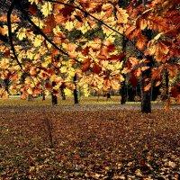 Фантазия на тему .......  Осень :: Татьяна #****#