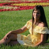девушка на травке или другой ракурс :: Олег Лукьянов