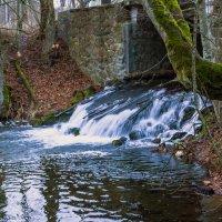 Водопад Роминтской пущи :: Игорь Вишняков