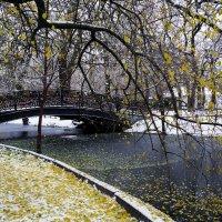 Встреча осени с зимой :: Ната Коротченко
