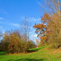 Ты слышишь Осени неуловимый ход часов?!...   Шум ветра, лёгкий вздох скользящего мгновенья… :: Galina Dzubina