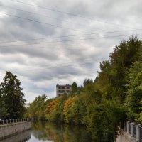 Осенний пейзаж :: Галина Galyazlatotsvet