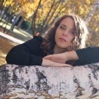 Золотая осень :: Alena Andreena