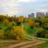 Осенние дорожки. :: Александр Атаулин