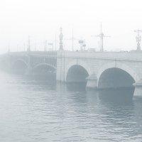 Троицкий мост в Петербурге :: Valerii Ivanov