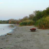 Осенний вечер на берегу... :: Тамара (st.tamara)