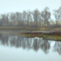 отражения :: Дмитрий Булатов