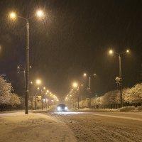 Снегопад :: Владимир