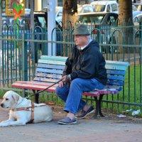 Слепой мужчина :: Ефим Хашкес
