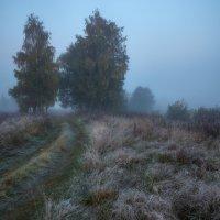 Синь осеннего тумана... :: Roman Lunin