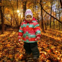 Осенний портрет. :: Anatol Livtsov