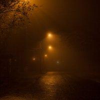 Туман. Улица. Фонари. :: Анатолий. Chesnavik.
