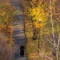 Осень жизни как и осень года ... :: Владимир