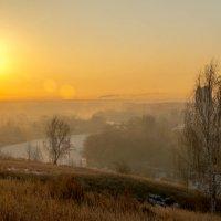 Утро :: Алексей Желтухин