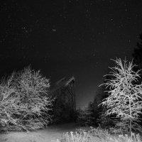 Затерянный в лесу :: Владислав Филипенко