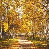 Осень :: Дмитрий