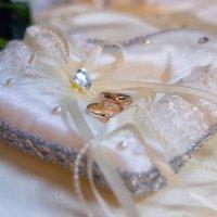 Свадьба Михаила и Марии ноябрь 2015 :: Елена Денисова