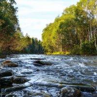 Горная река :: юрий Амосов