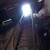 В верх по лестнице :: Татьяна Белогубцева