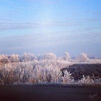 Прекрасное время года - зима :: Евгения Голубцова