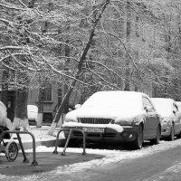 универсальная парковка)) :: Виктория Трунова