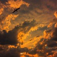 В вечернем небе :: Виктор Мороз