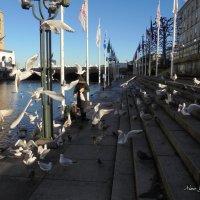 Танго с чайками :: Nina Yudicheva