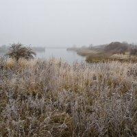 Туманный,ноябрьский день. :: Виктор Евстратов