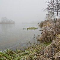 Первый ледок на ноябрьской Дубне. :: Виктор Евстратов