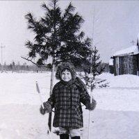 тридцать лет тому назад... :: Надежда Ерыкалина