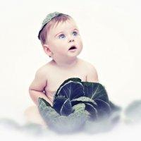 детский мир :: Степан Заянчковский