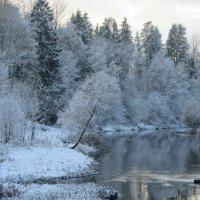 Берег зимы :: Mariya laimite