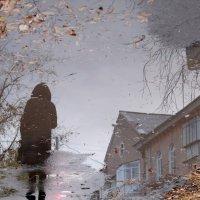 Осень :: Сергей Николаевич