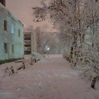 Ночной снегопад :: Роман Прокофьев