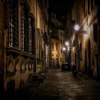 Ночная Флоренция :: Анна Корсакова