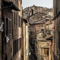Morning in Siena :: Dmitry Ozersky