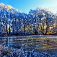 Морозное утро :: Николай Крюков