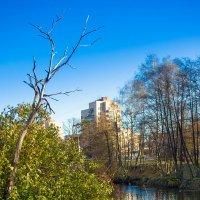 Дом на набережной :: Виталий