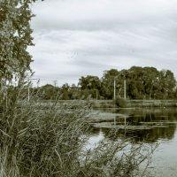 Осень... :: Рома Григорьев