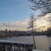 Замерзшее круглое озеро. :: Larisa Ereshchenko