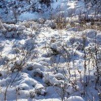 Рыхлый снег :: Анатолий Иргл
