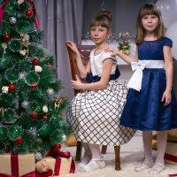 Две сестрички вечерком :: Анастасия Анастасия