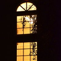 Ночное окно :: Николай Танаев