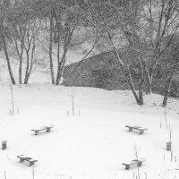 снег идёт в будущем парке :: Арсений Корицкий