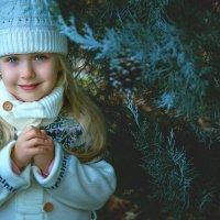Снежное настроение) :: Оксана Жданова