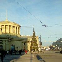 Петербург готовиться к Новому году! Первая елка на площади Восстания! :: Светлана Калмыкова