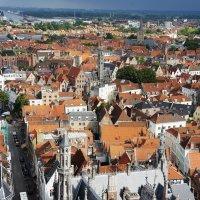 Вид со смотровой площадки башни Белфорт :: Елена Павлова (Смолова)