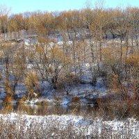 Снег на берегах Оки. :: Борис Митрохин