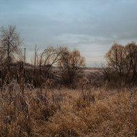 Глубокая осень :: Иван Анисимов
